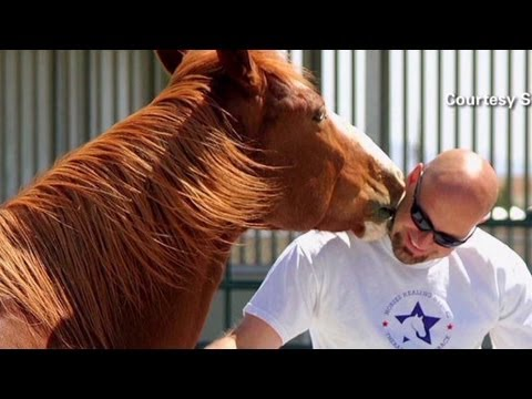 Video: Horses Help Veterans Heal