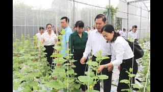 Tổng kết phong trào nông dân sản xuất, kinh doanh giỏi giai đoạn 2017-2020