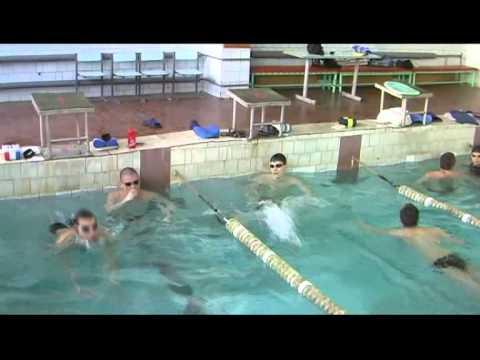 Техника плавания - Вольный стиль