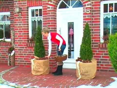 Winterschutz für Kübelpflanzen
