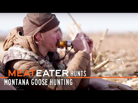 MeatEater Hunts Ep. 6: Montana Goose Hunting with Ryan Callaghan and Miles Nolte