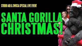 Video Santa Gorilla Christmas MP3, 3GP, MP4, WEBM, AVI, FLV April 2018