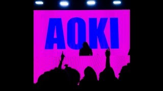 Video Steve Aoki Brooklyn, NY