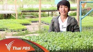ทุกทิศทั่วไทย - 13 พ.ย. 58