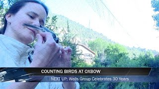 Counting Birds at Oxbow