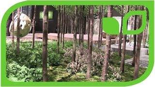 #1003 Giardina 2013 - Gartenbau Trüb