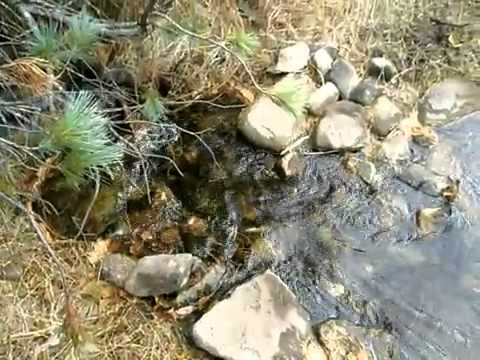 Magadan, Russia  Creek in the Mountains    YouTube (видео)