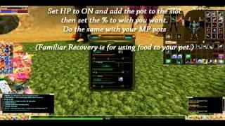 Knight Online Genie Set-up (Archer)