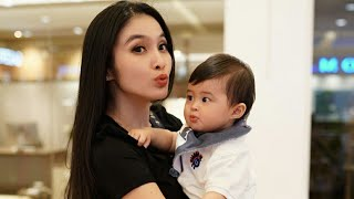 Video Begini Tingkah Suami Sandra Dewi Pulang Kerja… MP3, 3GP, MP4, WEBM, AVI, FLV November 2018