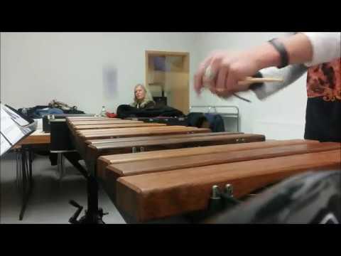 Mario Bürki - Magnetberg - Xylophon Part (видео)