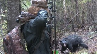"""Video Girl and Monster Bear Face-Off.  """"Don't miss kid or you'll be lunch!!"""" MP3, 3GP, MP4, WEBM, AVI, FLV Oktober 2017"""
