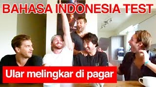 Video Canadian Take Indonesian Language Test! (PART 2) MP3, 3GP, MP4, WEBM, AVI, FLV Desember 2018