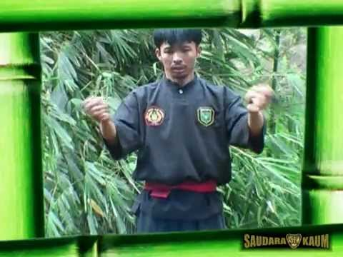 Pamacan, the Javanese tiger fighting system Mpeg2