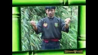 This video present you the next 3 realize from saudara-Kaum.fr The author is Mr Cecep A Rahman (Panglipur style) and he will...