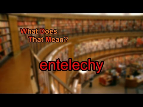 What does entelechy mean?