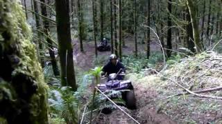 10. Honda Rincon 660, Suzuki Kingquad 700, arctic cat 400