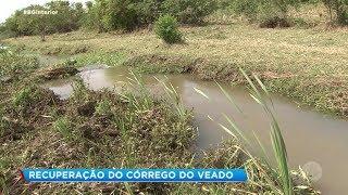 Prefeituras se unem para recuperar afluente do rio Batalha