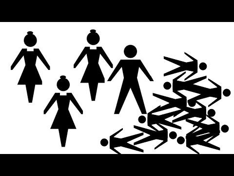 Sex power - why women were different and men were expendable