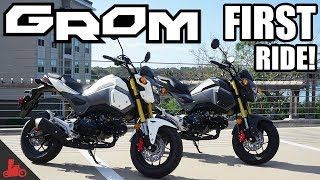 1. 2018 Honda Grom FIRST Ride!
