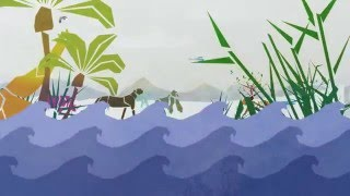 In celebration of the International Day for Biological Diversity, WAZA & Biodiversity is Us created this animated short that will debut ...