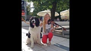 Video Despacito na zakończenie wakacji.cover violin by Sandra Cygan MP3, 3GP, MP4, WEBM, AVI, FLV Mei 2019