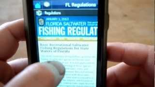 Fishing Gulf of Mexico YouTube video