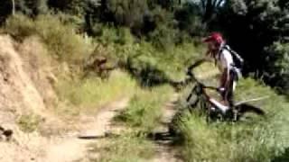 7. Trial Antonio e il beta 2010