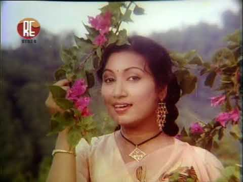 Video Dhou Tuli Nasile Buku // Aajoli Nabou (1980) // Hits of Bidya Rao & Biswajeet download in MP3, 3GP, MP4, WEBM, AVI, FLV January 2017