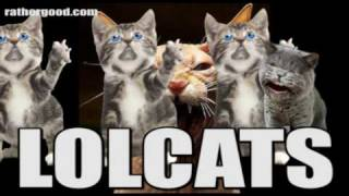 Lolcats song - YouTube