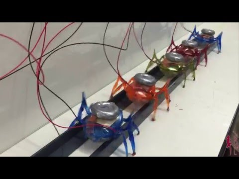 Let s all Pull Together Team of  Tug Microrobots Pulls a