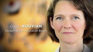 CLAIRE NOUVIAN, Bloom