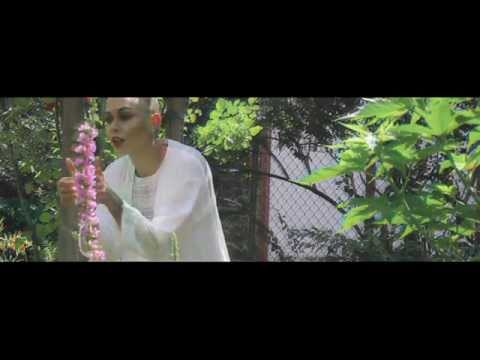 Nina Sky debut the appropriate hazy dream video for 'Stoners'