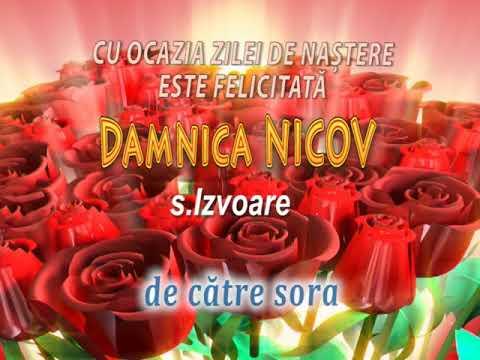 Damnica Nicov