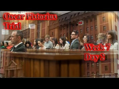 Oscar Pistorius trial , shows victim Reeva Steenkamp explicit pictures