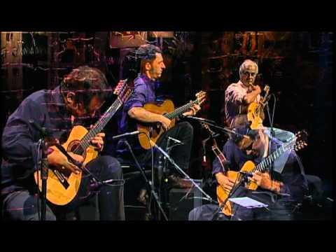 loro---trio-madeira-brasil