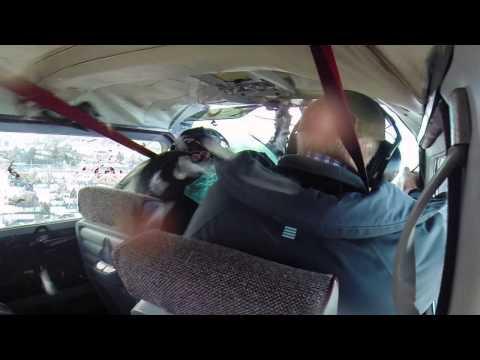 Гусь пробил лобовое стекло (фонарь) самолета