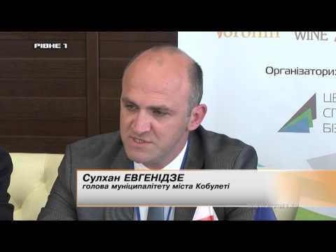 Грузини планують оживити Рівненський аеропорт [ВІДЕО]
