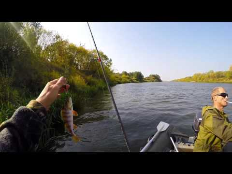 рыбалка на щуку в рязанской области видео