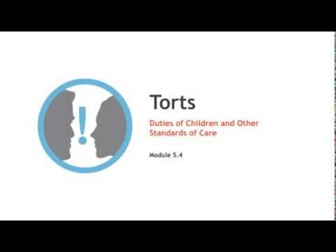 Torts lecture: Duties of Children and Other Particular Standards of Care | quimbee.com