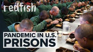 Pandemic In U.S. Prisons