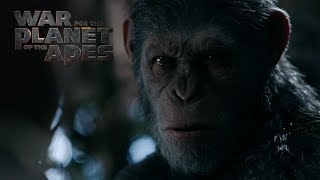 In War for the Planet of the Apes, the third chapter of the critically acclaimed blockbuster franchise, Caesar and his apes are forced into a deadly conflict with an army of humans led by a ruthless Colonel.  After the apes suffer unimaginable losses, Caesar wrestles with his darker instincts and begins his own mythic quest to avenge his kind.  As the journey finally brings them face to face, Caesar and the Colonel are pitted against each other in an epic battle that will determine the fate of both their species and the future of the planet.Now Playing Get Tickets Now: http://ApesMovieTickets.comDirected By Matt ReevesCast: Andy Serkis, Woody Harrelson, Steve Zahn, Amiah Miller, Karin Konoval, Judy Greer and Terry NotarySUBSCRIBE: http://bit.ly/FOXSubscribeWatch the Final Trailer: http://fox.co/APESFINALTRAILERWatch the Official Trailer: http://fox.co/warfortheplanettrailerWatch the Teaser Trailer: http://fox.co/warfortheplanetWitness the End: http://fox.co/WitnessTheEndWatch the Compassion video: http://fox.co/CompassionMeet Nova: http://fox.co/MeetNovaVisit the Official Site Here: http://WarForThePlanet.comLike War for the Planet of the Apes on FACEBOOK: http://fox.co/ApesFacebookFollow War for the Planet of the Apes on TWITTER: http://fox.co/ApesMoviesTwitterFollow War for the Planet of the Apes on INSTAGRAM: http://fox.co/ApesMoviesInstagram#WarForThePlanetWatch Dawn of the Planet of the Apes and Rise of the Planet of the Apes on Blu-ray, DVD, & Digital HD: http://www.foxdigitalhd.com/dawn-of-the-planet-of-the-apesAbout 20th Century FOX:Official YouTube Channel for 20th Century Fox Movies. Home of Avatar, Aliens, X-Men, Die Hard, Deadpool, Ice Age, Alvin and the Chipmunks, Rio, Peanuts, Maze Runner, Planet of the Apes, Wolverine and many more.Connect with 20th Century FOX Online:Visit the 20th Century FOX WEBSITE: http://bit.ly/FOXMovieLike 20th Century FOX on FACEBOOK: http://bit.ly/FOXFacebookFollow 20th Century FOX on TWITTER: http://bit.ly/TwitterFOXFollow 2