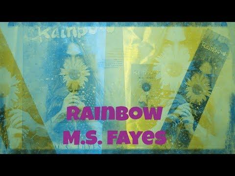 Livro Rainbow de M.S. Fayes
