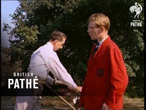 Park Rangers (1959)
