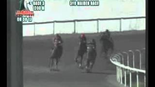 RACE 3 BHRAD 08/08/2013