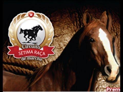 Cavalgada de Bela Vista de Minas MG  2013