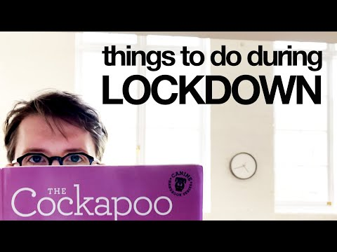 Things To Do during Lockdown