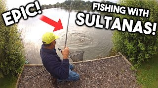 Yes that's right! This is the Sultana Fishing Challenge! We've had fish on Sweets, Peas and Potato's, now it is time to try and catch a fish on Sultanas! Can Graeme do it?! Watch on to find out how his session went! What crazy bait shall we use next?! Comment below and let us know your thoughts!► Download our Free Digital Fishing Magazine: http://www.awesomeangler.co.uk► Become a Patron for monthly Q&A and Behind the Scenes: https://www.patreon.com/totallyawesomefishing?ty=h► Check out the Salt Life YouTube Channel: https://www.youtube.com/c/saltlife▬▬▬▬▬▬▬ FOLLOW US ▬▬▬▬▬▬▬• Instagram → https://www.instagram.com/tafishingofficial/• Facebook → https://www.facebook.com/totallyawesomefishing• Snapchat → tafishing• Twitter → https://twitter.com/tafishing• Our website & DVDS → http://www.totallyawesomefishing.com• Google+ → https://plus.google.com/+TAFishing/posts▬▬▬▬▬▬▬ FILMING GEAR WE USE ▬▬▬▬▬▬▬Main Camera - SonySecondary Camera - http://amzn.to/2jXo3C0DSLR Camera - http://amzn.to/2bXaO1YLaptop Editing Computer - http://amzn.to/2g4LMd4GoPro Chest Mount - http://amzn.to/2cjvTBLGoPro Head Mount - http://amzn.to/2bXdwo4Drone - http://amzn.to/2bXd0GIMike's Camera Microphone - http://amzn.to/2bThNbbThese are Amazon associate links ▬▬▬▬▬▬▬ TAF CLOTHING & MERCH ▬▬▬▬▬▬▬UK Clothing Store → http://totallyawesomefishing.spreadshirt.co.uk/Europe Clothing    → http://totallyawesomefishing-eu.spreadshirt.net/US Clothing Store → http://totallyawesomefishing.spreadshirt.com/▬▬▬▬▬▬▬ FISHING PLAYLISTS ▬▬▬▬▬▬▬SEA FISHING: https://www.youtube.com/playlist?list=PLlJDPmb6OexrDnAFNBNJez8zRe4EECDZYBEACH FISHING: https://www.youtube.com/playlist?list=PLlJDPmb6OexpRHtX7Wp_3lDa6hAmChIuhCARP FISHING: https://www.youtube.com/playlist?list=PLlJDPmb6OexrY3ZHJk6KIAva6yZgyL9NoFLY FISHING: https://www.youtube.com/playlist?list=PLB995E0AF38A6353FPIKE, PERCH & ZANDER: https://www.youtube.com/playlist?list=PLlJDPmb6Oexpa4bpAxjX6ptu_dgIx3PRWRIVER FISHING: https://www.youtube.com/playlist?list=PLlJDPmb6Oe