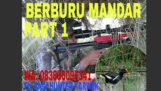 Video BERBURU MANDAR PART (1) MP3, 3GP, MP4, WEBM, AVI, FLV Desember 2018