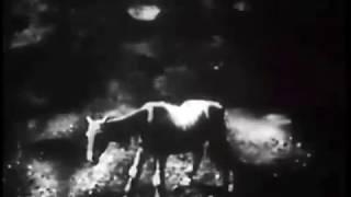 Nonton Alexeieff's Night on Bald Mountain (great sound) Film Subtitle Indonesia Streaming Movie Download