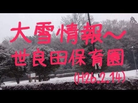 大雪情報!太田市世良田町世良田保育園裏(H26.2.14)